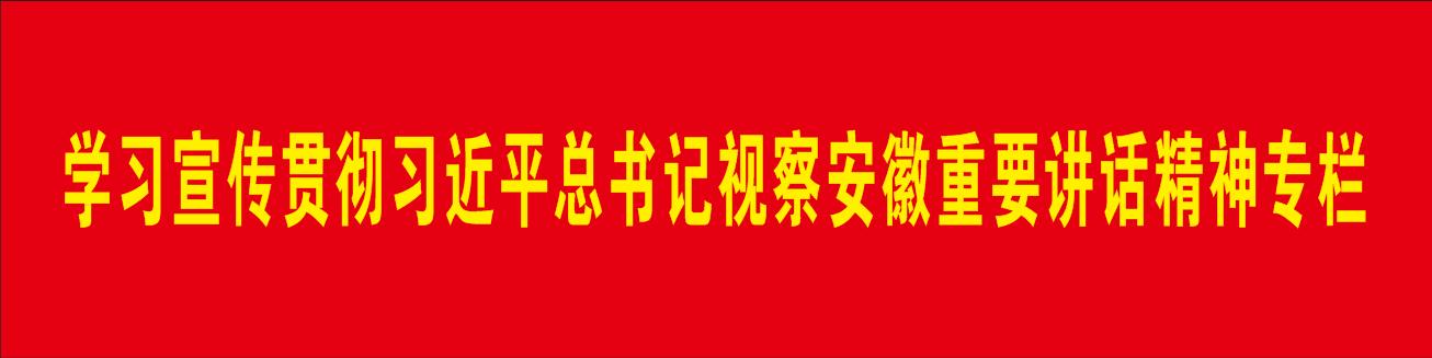 学习宣传贯彻习jin平zong书记视察an徽重yaojiang话精神专lan